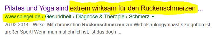 Externer-Beweis-Pilates-Rueckenschmerzen-Spiegel